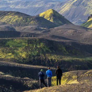 Conheça 7 opções de profissões para quem gosta de natureza