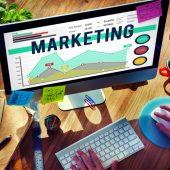 Graduação em Marketing: o que você precisa saber para começar