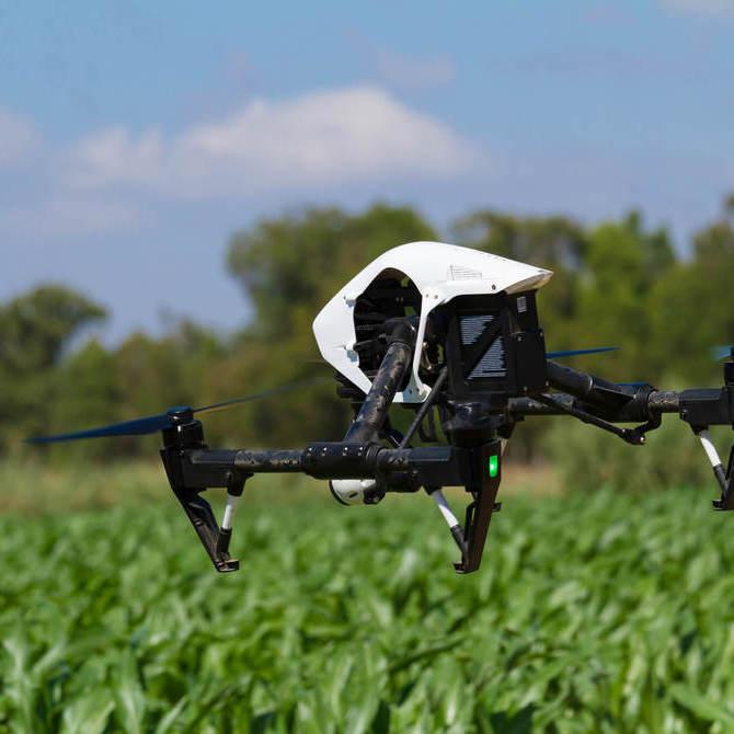 Tecnologia no agronegócio: fique por dentro das tendências da agricultura 3.0