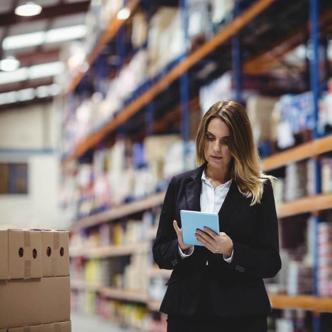 Que tipo de formação e habilidades deve ter um profissional de logística?